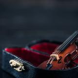 バイオリンが生まれた歴史と、バイオリンの名称を紹介